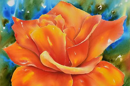 Rotgelbe Rose