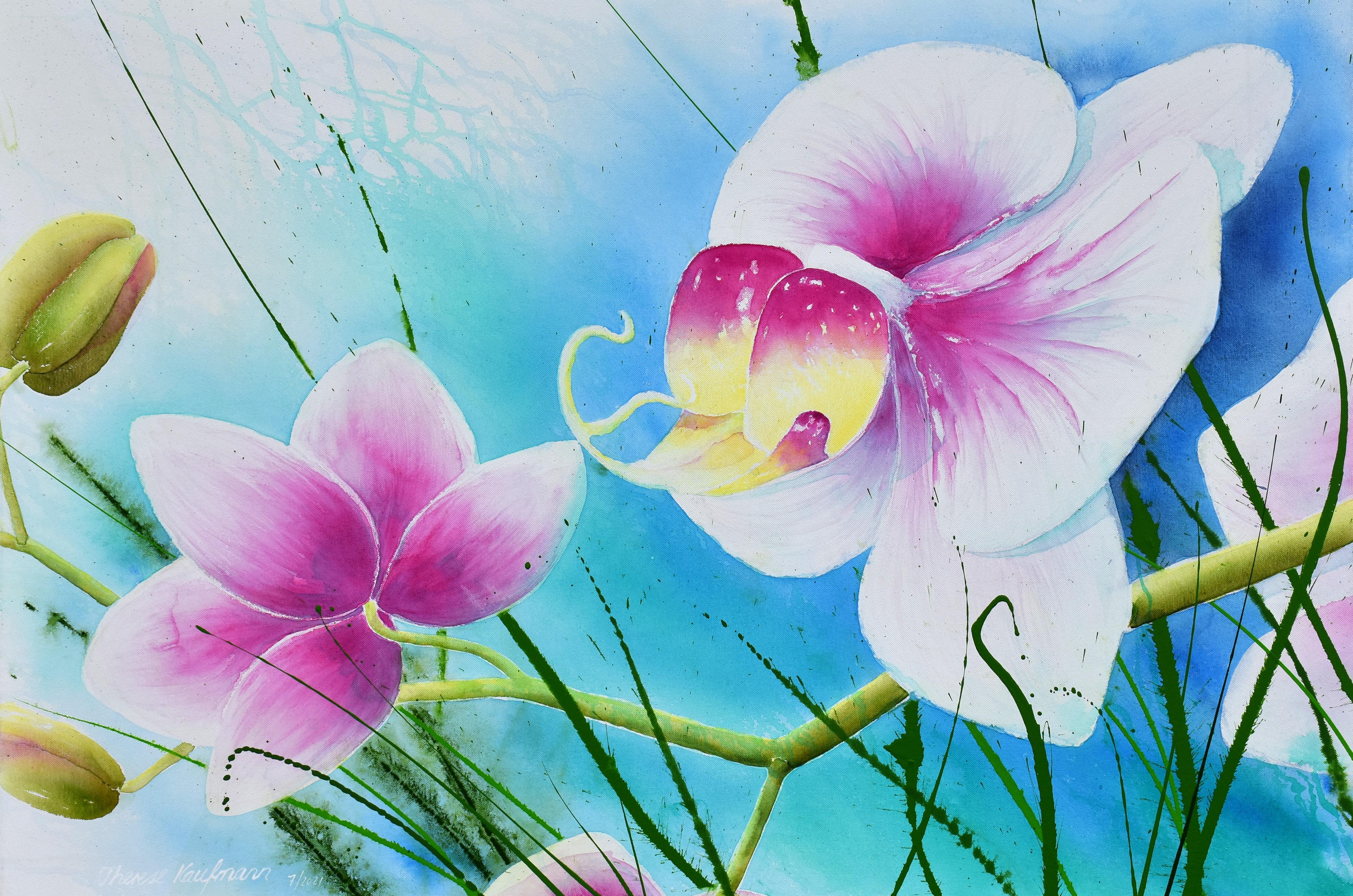 Südsee-Orchidee