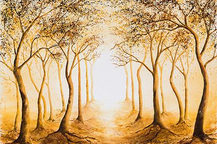 Durch den Wald ins Licht