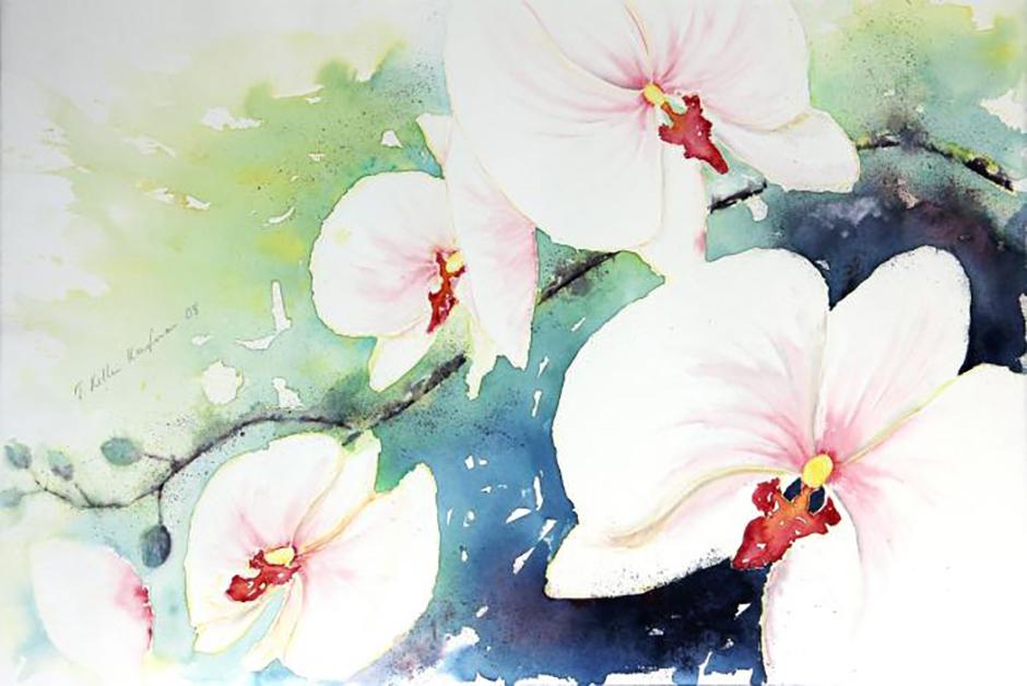 Orchideen II